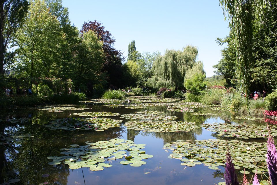Lilly Pond (Giverny, France)